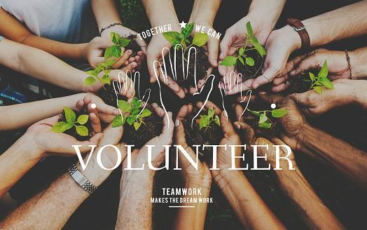 Helping Hands Volunteer Support Community Service Graphic Stock Photo -  Download Image Now - iStock