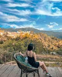 Nhu Quỳnh